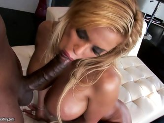 Curvaceous Shyla Stylez gets rammed by a Black...